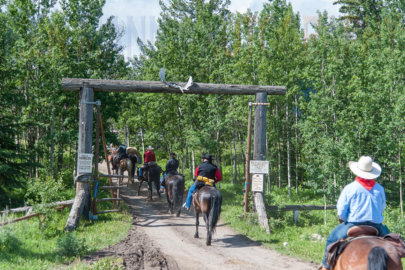 Rafter Six Trail Ride - 100th Calgary Stampede-90